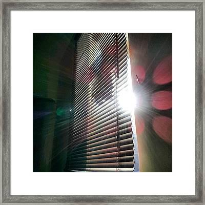 My #window In #morning #sunshine #sun Framed Print