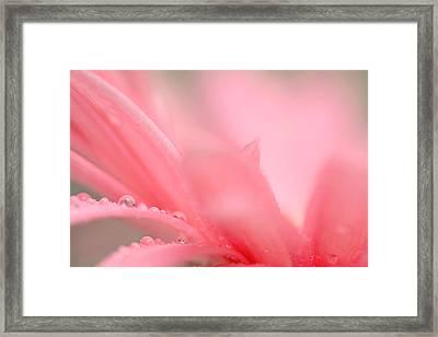 My Wish... Framed Print by Melanie Moraga