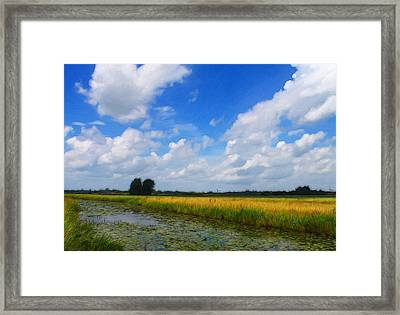 My Wonderful Eastfrisia Framed Print by Steve K