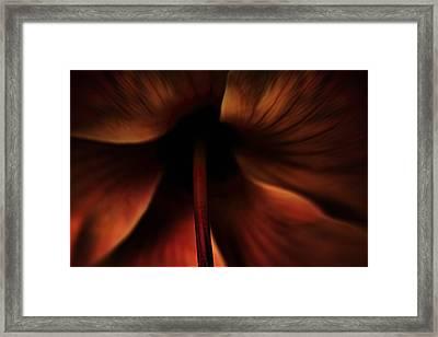 Mysterious Framed Print