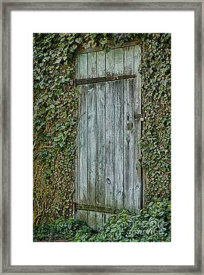 Framed Print featuring the photograph Mysterious Doorway by Vicki DeVico