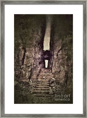 Mysterious Stairway Into A Canyon Framed Print
