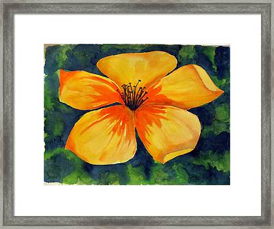 Mysterious Yellow Flower Framed Print