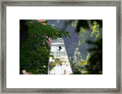 Mystery Fall Framed Print by Michel DesRoches