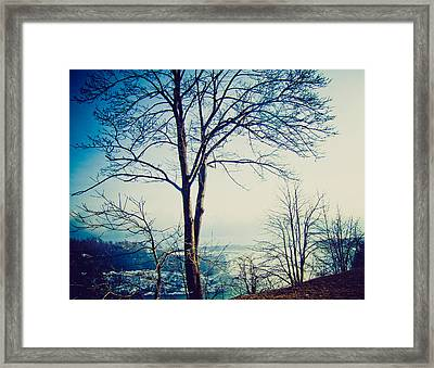 Mystic Blue Framed Print by Sara Frank