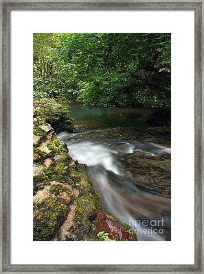Mystic Creek Framed Print by Tyra  OBryant