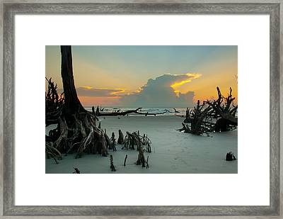 Mystical Forest Framed Print