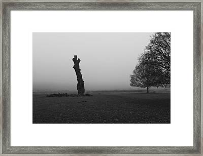 Framed Print featuring the photograph Naked Tree by Maj Seda
