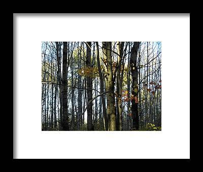 Karen Jordan Framed Prints