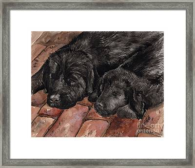 Framed Print featuring the painting Nap Time by Nancy Patterson