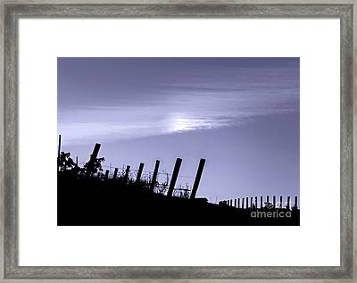Napa Moonglow Framed Print