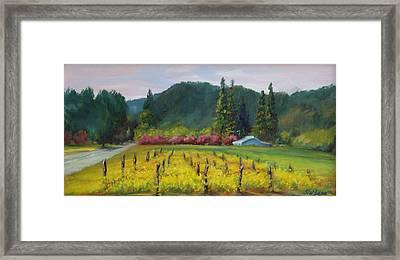 Napa Valley Mustards On Silverado Trail Framed Print by Deirdre Shibano