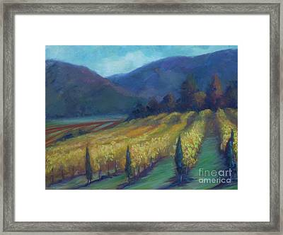 Napa Valley View From The Castle Framed Print by Deirdre Shibano