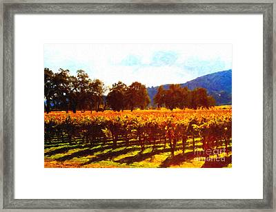 Napa Valley Vineyard In Autumn Colors 2 Framed Print by Wingsdomain Art and Photography