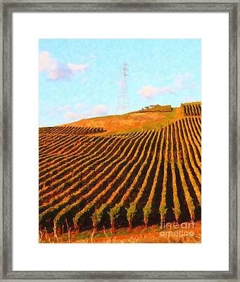 Napa Valley Vineyard . Portrait Cut Framed Print by Wingsdomain Art and Photography