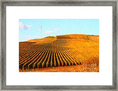 Napa Valley Vineyard Framed Print by Wingsdomain Art and Photography