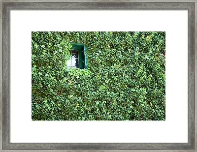 Napa Wine Cellar Window Framed Print