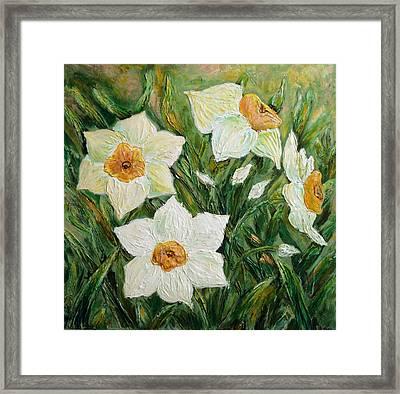 Narcissus In Bloom Framed Print