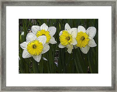 Narcissus Framed Print by Michael Friedman