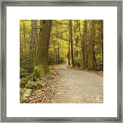 Narrow Way Framed Print by Gary Suddath