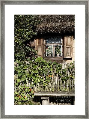 Nasturtium Bench Framed Print