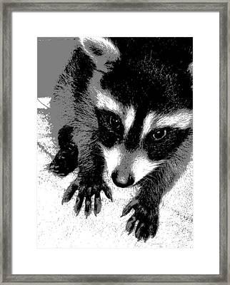 Nataly's Framed Print by Ember Findlay