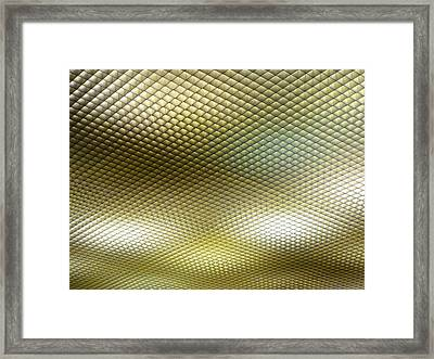 National Ceiling Framed Print