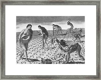Native American Indian Agriculture Framed Print