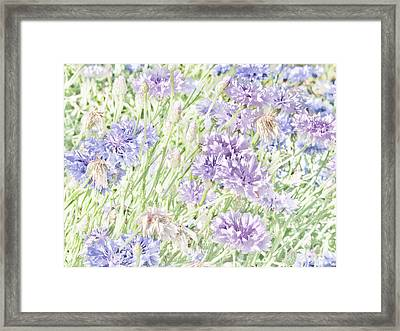 Natural Beauty Framed Print by Bonnie Bruno