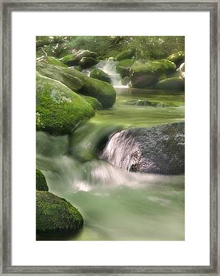 Natural Beauty Framed Print by Cindy Haggerty
