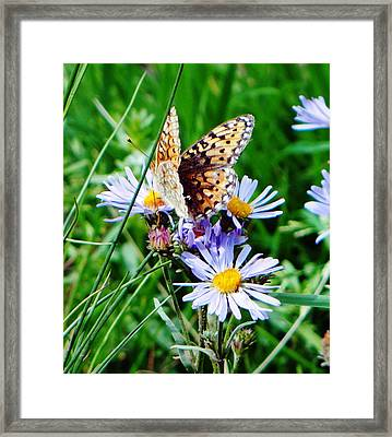 Natural Beauty Framed Print by Margaret  Slaugh