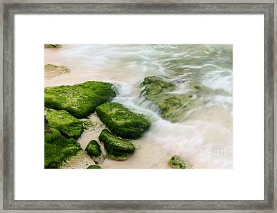 Natural Beauty Framed Print by Sophie Vigneault