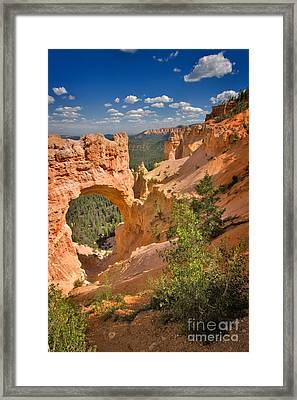 Natural Bridge In Bryce Canyon National Park Framed Print by Louise Heusinkveld