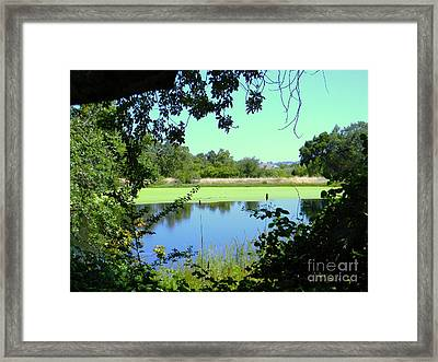 Natural Layers Framed Print by DJ Laughlin