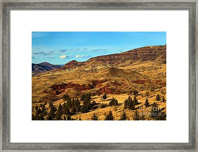 Natural Paint Framed Print by Adam Jewell
