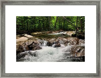 Natural Pool Framed Print