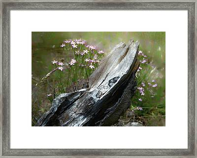 Natural Sculpture Framed Print by Jocelyn Kahawai