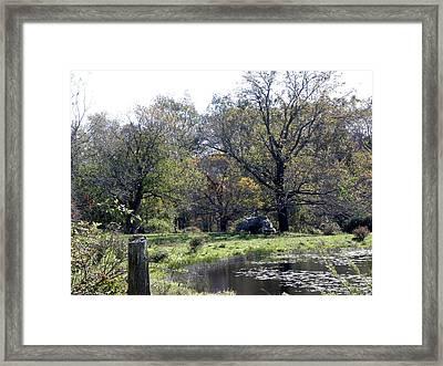 Natural Setting Framed Print by Kim Galluzzo Wozniak