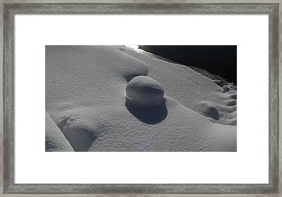 Natural Snowball Framed Print by Waldemar Okon