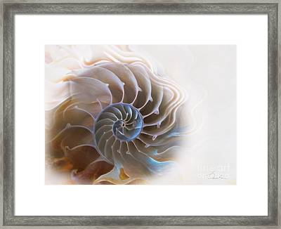 Natural Spiral Framed Print