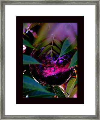Framed Print featuring the photograph Natural Transcendence by Susanne Still