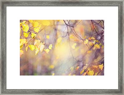 Natural Watercolor Of Autumn Framed Print by Jenny Rainbow
