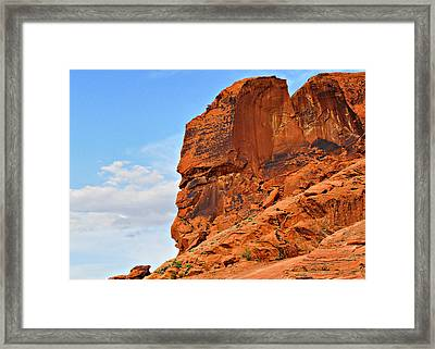Nature - The Most Eccentric Artist Framed Print by Christine Till