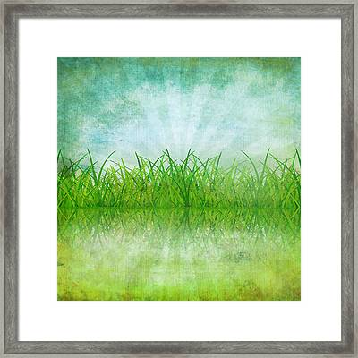 Nature And Grass On Paper Framed Print