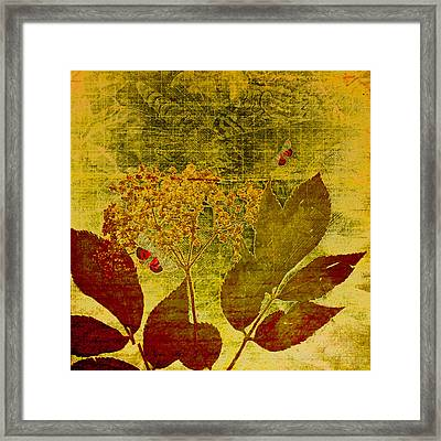 Nature At Work Framed Print by Bonnie Bruno