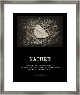 Nature Framed Print by Bonnie Bruno