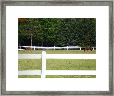 Nature Collection Framed Print