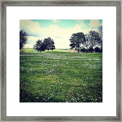 #nature #flowers #salford #manchester Framed Print by Abdelrahman Alawwad
