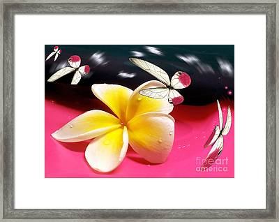 Nature In Orbit Framed Print