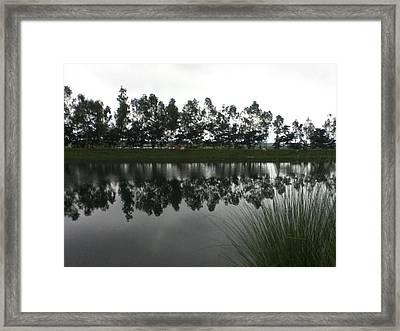Nature Framed Print by Mamunur Rashid